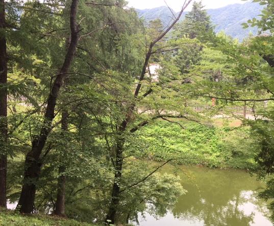 上田5.png